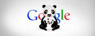 Panda Optimizare